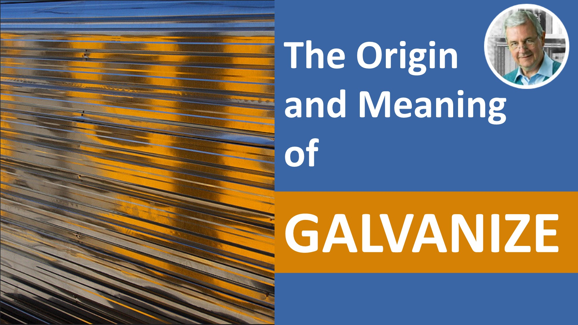 the meaning of galvanize