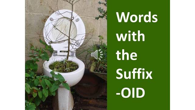 words with the suffix OID