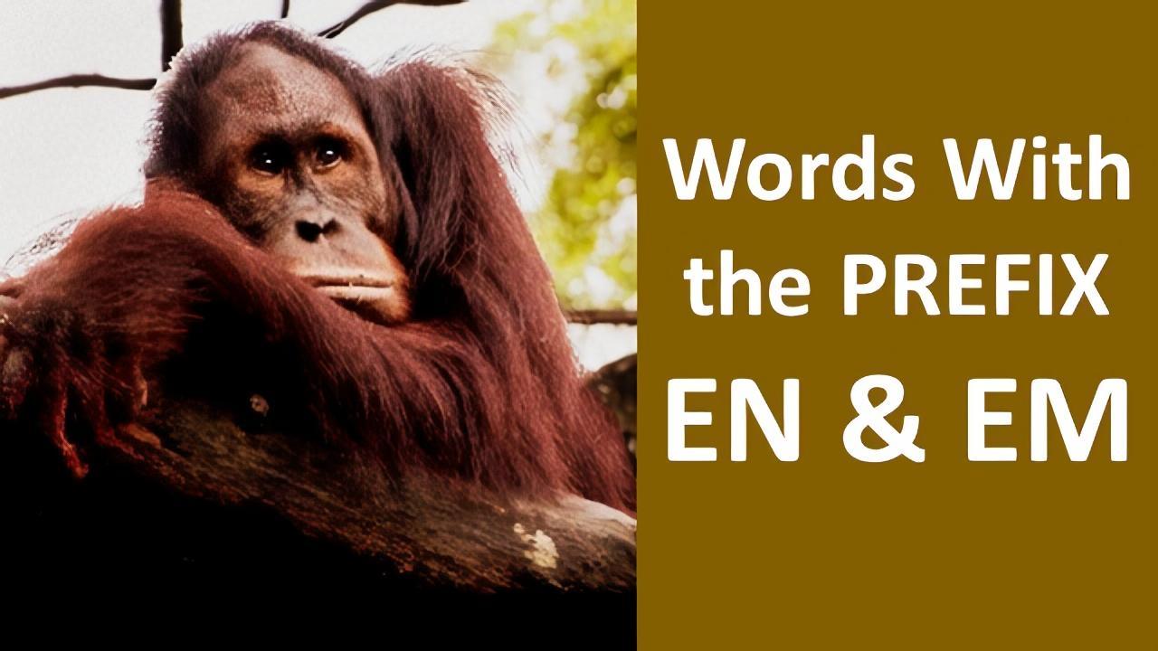 meaning of prefix en and em