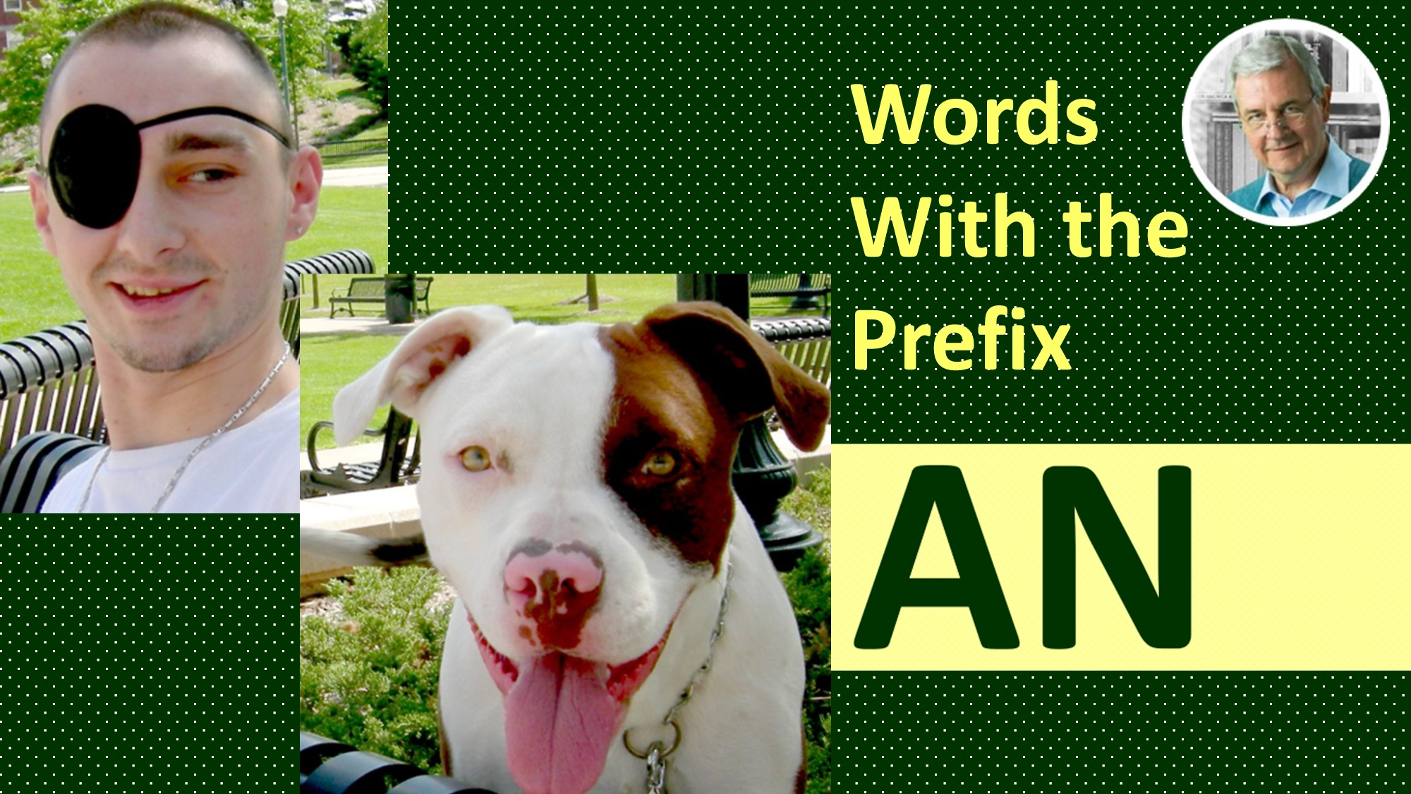 words with the prefix an