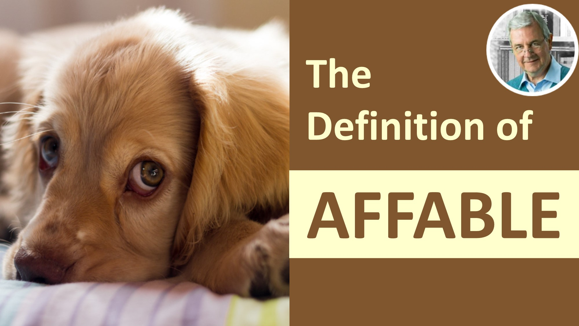meaning of affable